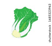vector chinese cabbage or... | Shutterstock .eps vector #1685323963