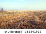 Autumn Landscape Of Dry Grass...