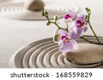 seeking for inner beauty from... | Shutterstock . vector #168559829