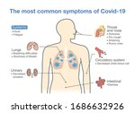 most common symptoms of covid... | Shutterstock .eps vector #1686632926