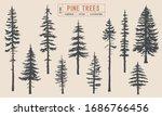 Pine Tree Silhouette Vector...