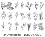 collection forest fern...   Shutterstock .eps vector #1687047370