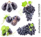 Collection Dark Grapes Leaves Isolated - Fine Art prints