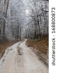winter path | Shutterstock . vector #168800873