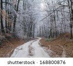 winter path | Shutterstock . vector #168800876