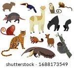 South American Animal Vector...