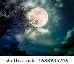 Landscape Of Dark Night Sky...