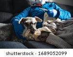Sick man with procedure mask and medical gloves checking a thermometer liying on the sofa and caress a dog, probably infected by coronavirus - stock photo