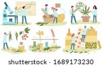 homeopathy and natural... | Shutterstock .eps vector #1689173230