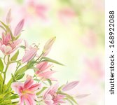 Stock photo pink lilies with copy space floral natural background 168922088