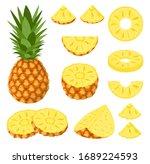 set of fresh whole  half  cut... | Shutterstock .eps vector #1689224593