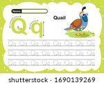 Colorful Letter Q Uppercase An...