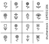 flower icon set   vector... | Shutterstock .eps vector #169031186