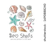 Seashells Slogan With Colorful...