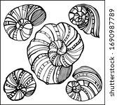 seashells  mollusks vector...   Shutterstock .eps vector #1690987789