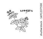 silhouette of oregano seasoning ... | Shutterstock .eps vector #1691237530