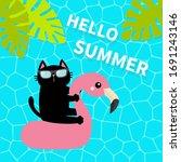 black cat floating on white... | Shutterstock .eps vector #1691243146