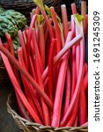 Red Pink Rhubarb Sale. Local...