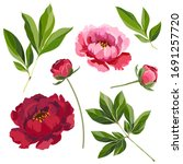 set of leaves  buds and flowers ...   Shutterstock .eps vector #1691257720