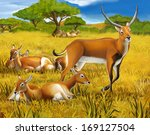 Safari   Koba Lychee   Colorin...