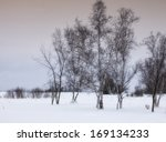 scenic winter landscape with... | Shutterstock . vector #169134233