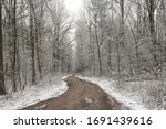 Dirt Road In Winter Forest In...
