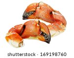 Jonah Atlantic Coast Rock Crab...