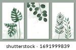 set of botanic and wild leaves... | Shutterstock .eps vector #1691999839