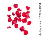 bunch of red rose petals... | Shutterstock . vector #1692544303