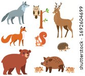 Forest Animals Set Collection...