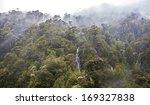 Rain Forest  Carretera Austral...