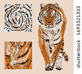Vector Sketch Of Walks Bengal...