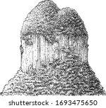 mountain illustration  drawing  ...   Shutterstock .eps vector #1693475650