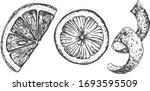 vector illustration of an... | Shutterstock .eps vector #1693595509