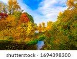 Autumn Forest Pond Landscape...