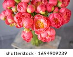 Coral Peonies In A Glass Vase...