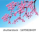 Beautifull Sakura Cherry...