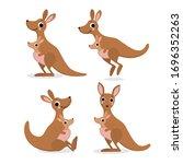 Cute Kangaroo And Baby  Joey...