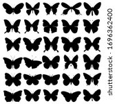 vector  isolated  butterfly... | Shutterstock .eps vector #1696362400
