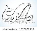 Cute Atlantic Aqua Baleen Old...