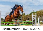 Show Jumping Competition On...