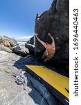 Small photo of Male rock climber practicing bouldering without rope on a boulder area in front of the sea. A high boulder for people with tenacity and confidence to climb the cliff with the risk of severe damage