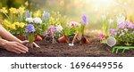 garden flowers  plants and... | Shutterstock . vector #1696449556