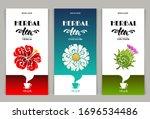 vector set of templates... | Shutterstock .eps vector #1696534486