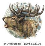 deer. realistic  artistic ... | Shutterstock .eps vector #1696623106