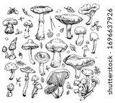 mushrooms  leaves and berries...   Shutterstock .eps vector #1696637926