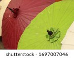 Umbrella Made From The Pulp Of...