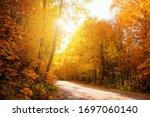 The Road Through The Autumn...