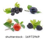 autumn   fruit collection | Shutterstock . vector #16972969