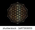 flower of life  yantra mandala... | Shutterstock .eps vector #1697303053